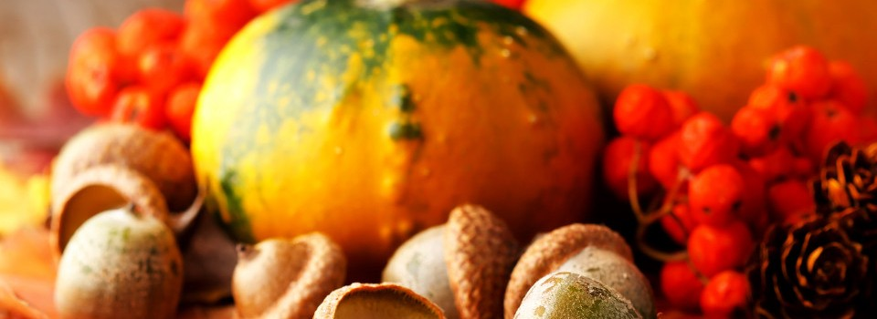 image of gourds and acorns