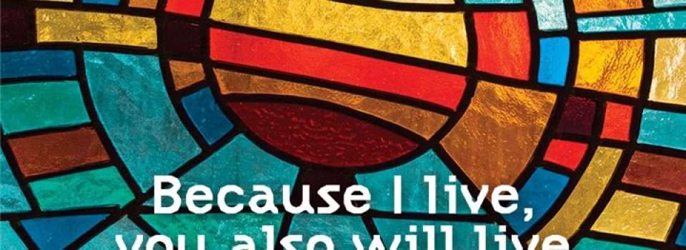 Because I live, you also will live - John 14:19