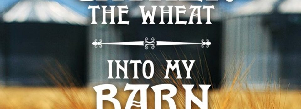 Gather the wheat into my barn