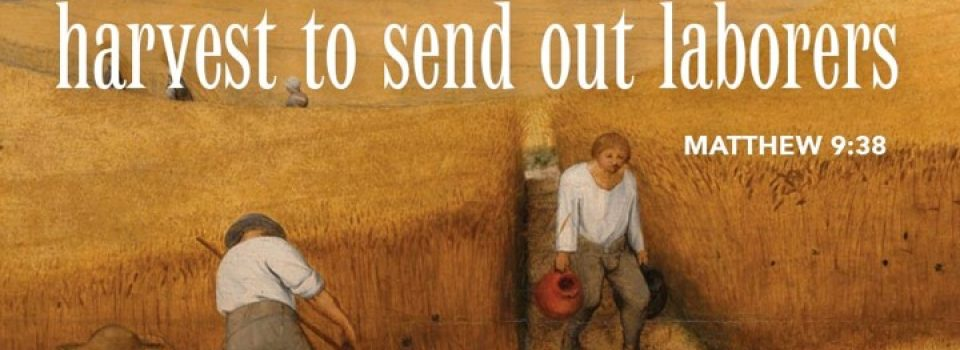 Ask the Lord of the harvest to send out laborers