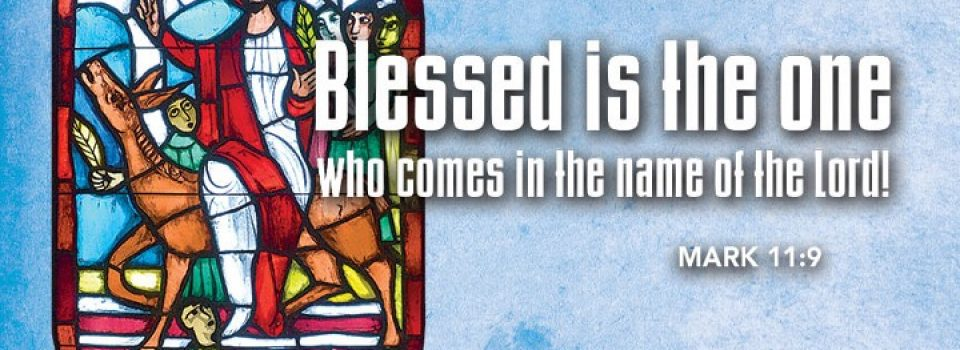 Bless is the one who comes in the name of the Lord - bible passage