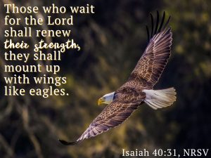 Bible verse - Isaiah 40:31, over image of eagle in flight