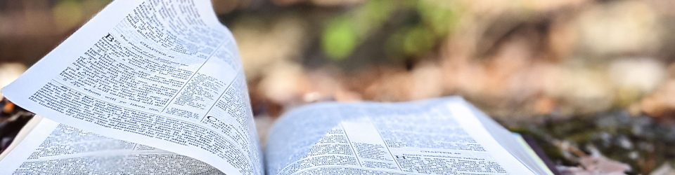 Image of bible on forest floor, wind blowing one page up