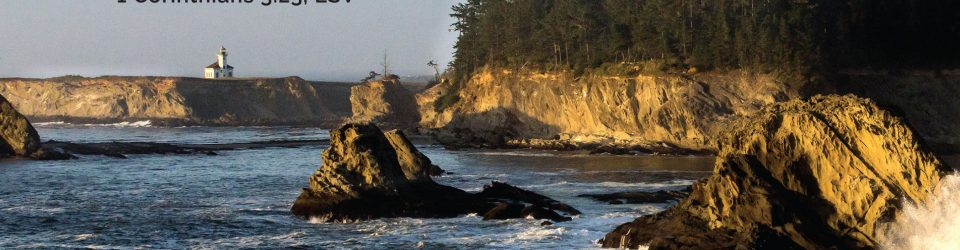 A rocky shore with trees on a high bluff