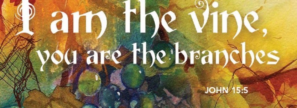 I am the vine, you are the branches - bible verse