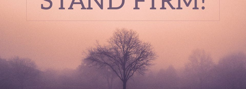 """image of standing tree with the text: """"Stand Firm!"""""""