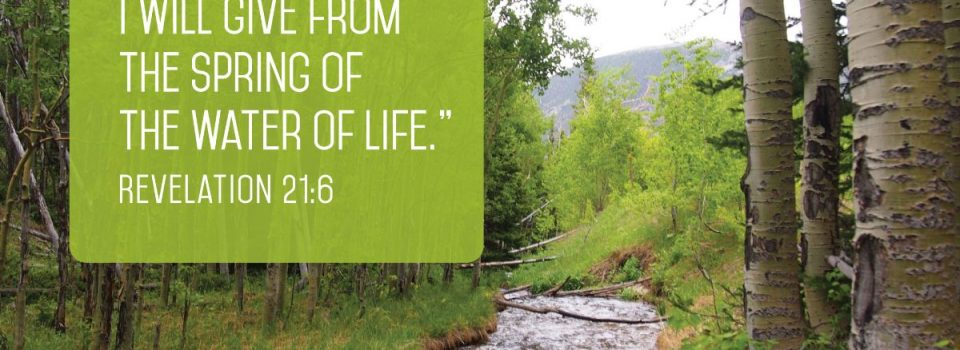 To the thirsty I will give from the spring of the water of life. - Revelation 21:6