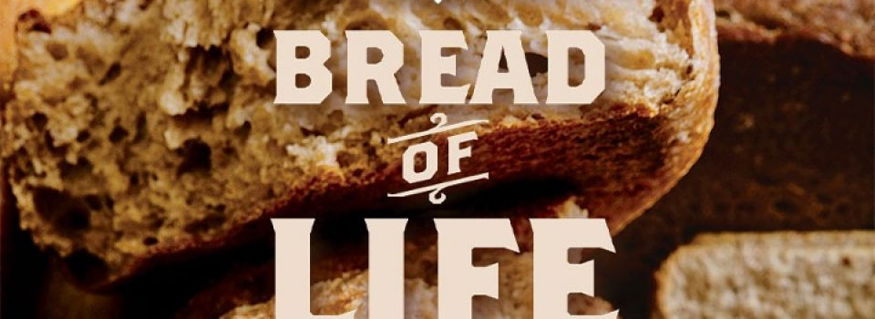 I am the bread of life - bible verse